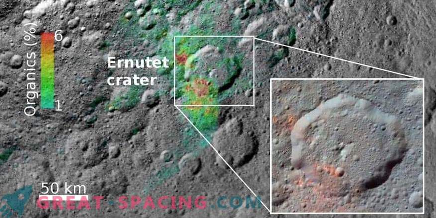 The origin of organic matter in Ceres