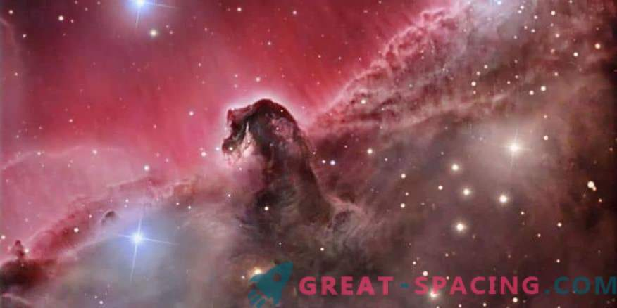 What happens in the Horsehead Nebula?