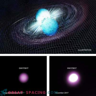 A gravitational wave event may hint at the formation of a black hole