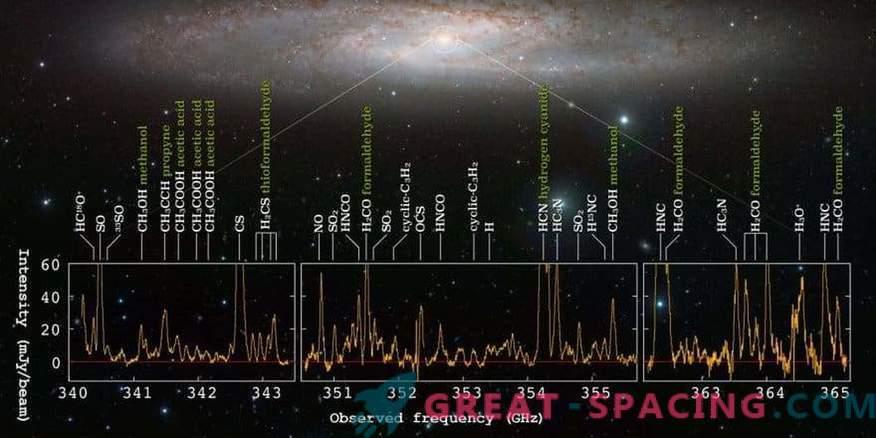 A galaxy of stellar birth demonstrates a sea of molecular signals