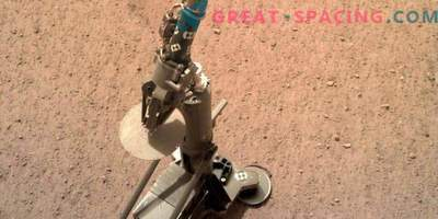 A mole appeared on Mars: the InSight mission prepares to drill
