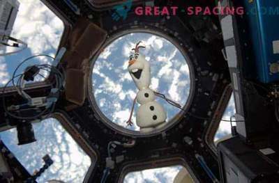 Olaf - nuts snowman in space