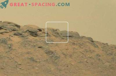 Buddha tracks on the Red Planet!