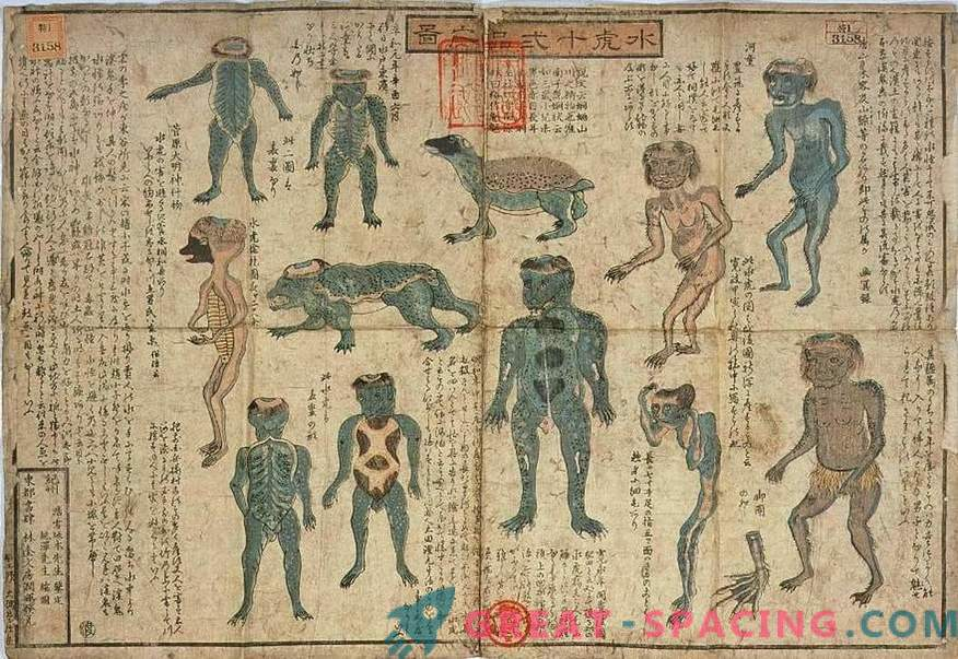 The 200-year-old exhibit of the Japanese Museum resembles a Kapp mythological creature. Version ufologov