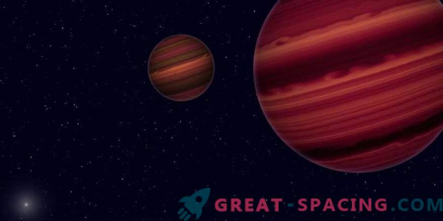 What does the system of two brown dwarfs hide?