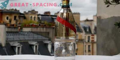 Champagne in space! A bottle of Zero-G allows tourists to enjoy a drink in the endless space