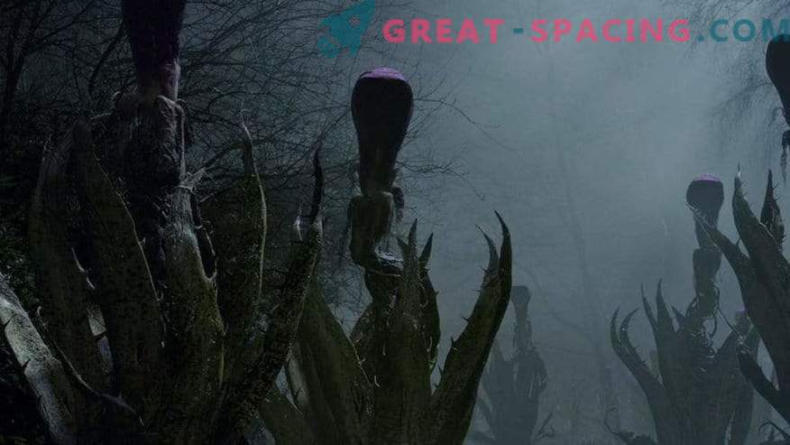 What do aliens look like in popular movies