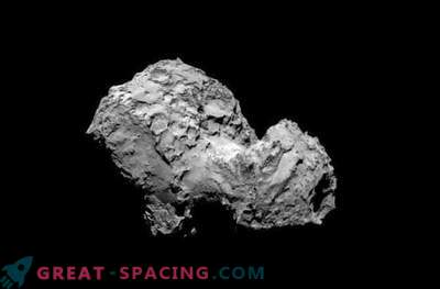 The building blocks of life are found on the comet Rosetta