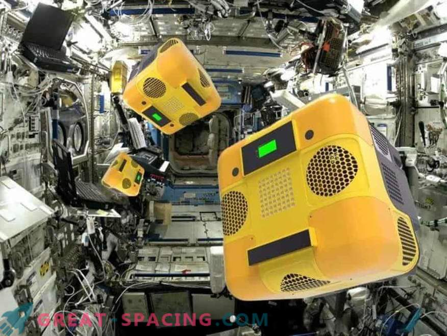 What do the robot bees at the orbital station