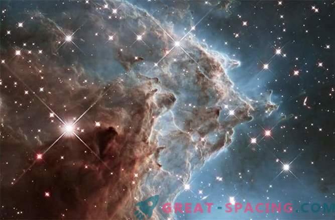 The impact of stellar winds on the Monkey Head Nebula